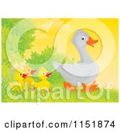 Cartoon Of A Walking Goose And Chicks Royalty Free Illustration by Alex Bannykh