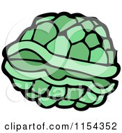 Cartoon Of A Green Turtle Shell Royalty Free Vector Illustration by lineartestpilot