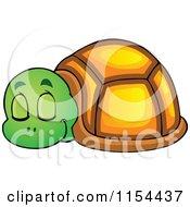 Cartoon Of A Cute Sleeping Turtle Royalty Free Vector Illustration