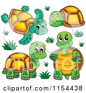 Cartoon Of Cute Turtles Royalty Free Vector Illustration by visekart
