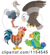 Cartoon Of An Ostrich Bald Eagle Chicken And Parrot Royalty Free Vector Clipart