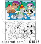 Cartoon Of Outlined And Colored Bear Seal And Penguin On Ice Royalty Free Vector Clipart by visekart