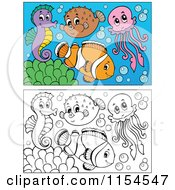 Cartoon Of Outlined And Colored Marine Fish Royalty Free Vector Clipart by visekart