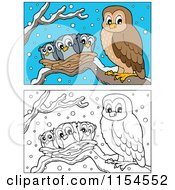 Cartoon Of Outlined And Colored Owl And Chicks In A Nest Royalty Free Vector Clipart