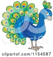 Cartoon Of A Cute Peacock Royalty Free Vector Clipart