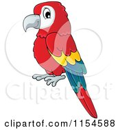 Cartoon Of A Red Parrot Royalty Free Vector Clipart