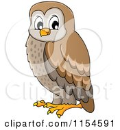 Cartoon Of A Brown Owl Royalty Free Vector Clipart by visekart