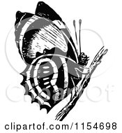 Retro Vintage Black And White Butterfly On A Twig