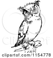 Clipart Of A Retro Vintage Black And White Owl Royalty Free Vector Clipart by Prawny Vintage