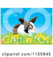 Cartoon Of A Bunny Rabbit In A Field Of Wildflowers Royalty Free Illustration