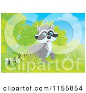 Cartoon Of A Cute Raccoon Emerging From Shrubs Royalty Free Illustration by Alex Bannykh