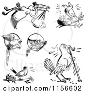 Clipart Of Black And White Retro Birds Royalty Free Vector Clipart