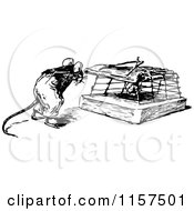 Retro Vintage Black And White Mouse By A Trap