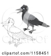 Cartoon Of Colored And Outlined Crow Birds Royalty Free Illustration by Alex Bannykh