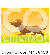Cartoon Of A Happy Doxie Dog Walking In Grass Royalty Free Illustration