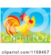 Cartoon Of A Crowing Rooster In Flowers Royalty Free Illustration by Alex Bannykh