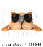 Clipart Of A 3d Chubby Ginger Cat Wearing Sunglasses Over A Sign Royalty Free CGI Illustration