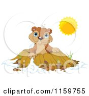 Cartoon Of A Cute Groundhog Emerging From A Hole On A Sunny Day Royalty Free Vector Clipart by Pushkin