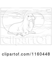Cartoon Of An Outlined Walrus On Ice Royalty Free Vector Clipart by Alex Bannykh