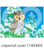 Cartoon Of A Spotted Owl Perched In A Snow Flocked Tree Royalty Free Clipart by Alex Bannykh