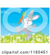 Cartoon Of A Gray Bunny Walking With A Carrot Royalty Free Clipart