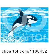 Cartoon Of A Cute Orca Whale Leaping Out Of Water Royalty Free Vector Clipart by Alex Bannykh