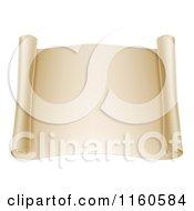 Blank Open Scroll