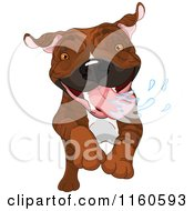 Cartoon Of An Excited Brindle Pit Bull Dog Running And Drooling Royalty Free Vector Clipart