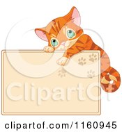 Cartoon Of A Cute Ginger Cat Hanging On A Tan Sign With Paw Prints Royalty Free Vector Clipart
