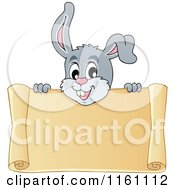 Cartoon Of An Easter Bunny Over A Scroll Sign Royalty Free Vector Clipart