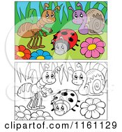 Cartoon Of Outlined And Colored Bugs And Flowers Royalty Free Vector Clipart by visekart