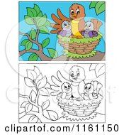 Cartoon Of Outlined And Colored Chicks And A Mother In A Nest Royalty Free Vector Clipart by visekart