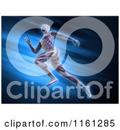 Clipart Of 3d Muscular Anatomy Of A Runner Over Blue Royalty Free CGI Illustration