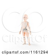 Clipart Of A 3d Child Standing With A Visible Skeleton Royalty Free CGI Illustration