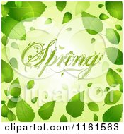Clipart Of Floral Spring Text Over Flares And Bordered With Green Leaves Royalty Free Vector Illustration by elaineitalia