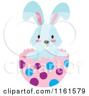 Cartoon Of A Blue Easter Bunny Playing In A Polka Dot Egg Shell 3 Royalty Free Vector Clipart by Cherie Reve