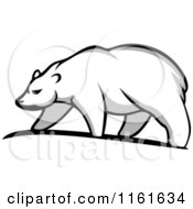 Clipart Of A Walking Polar Bear In Profile 3 Royalty Free Vector Illustration by Vector Tradition SM