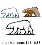 Walking Bears