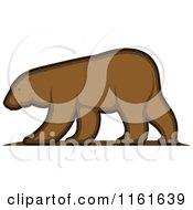 Walking Bear In Profile