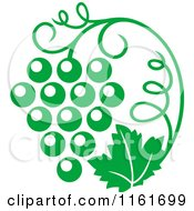 Clipart Of A Green Grape Vine And Bunch Royalty Free Vector Illustration by Vector Tradition SM