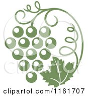 Clipart Of An Olive Green Grape Vine And Bunch Royalty Free Vector Illustration