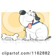 Cartoon Of A Happy Chubby White Dog Sitting By A Bone On Yellow Royalty Free Vector Clipart