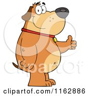 Cartoon Of A Happy Chubby Brown Dog Standing And Holding A Thumb Up Royalty Free Vector Clipart
