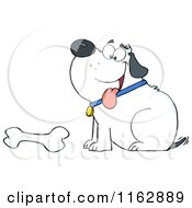 Cartoon Of A Happy Chubby White Dog Sitting By A Bone Royalty Free Vector Clipart