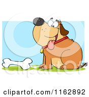 Cartoon Of A Happy Chubby Brown Dog Sitting By A Bone On Blue Royalty Free Vector Clipart