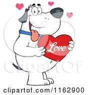 Happy Chubby White Dog Holding A Red Valentine Heart
