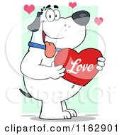 Cartoon Of A Happy Chubby White Dog Holding A Red Love Valentine Heart On Green Royalty Free Vector Clipart