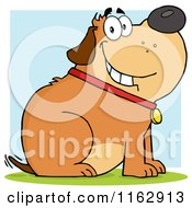 Cartoon Of A Happy Chubby Brown Dog Sitting And Wagging His Tail Over Blue Royalty Free Vector Clipart