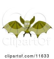 Flying Vampire Bat