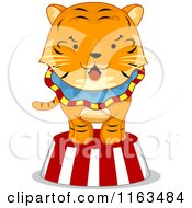 Cartoon Of A Circus Tiger On A Platform Royalty Free Vector Clipart by BNP Design Studio